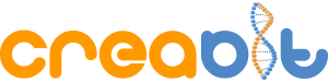 Creabit – Digital Media Agency